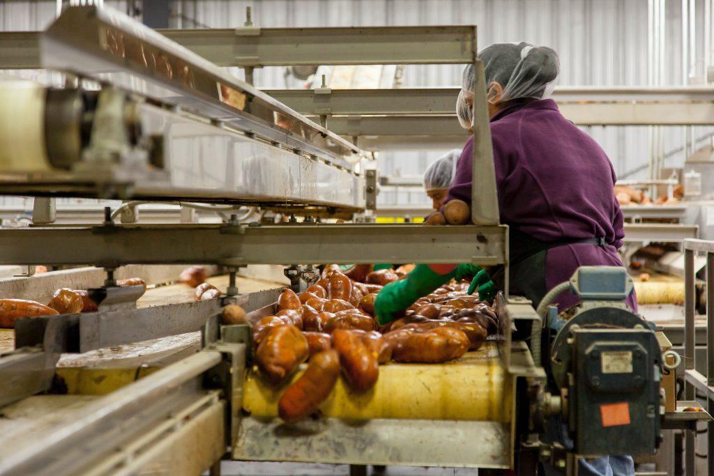 Công nghiệp chế biến là đơn vị cần coi trọng việc bảo trì máy móc lên hàng đầu